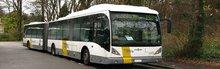 Bus - Truck - Trailer